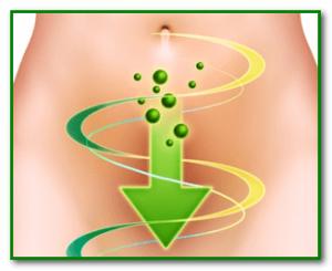 Очищение кишечника для похудания