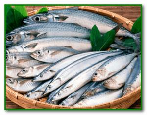 Отравление рыбой человека