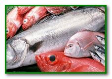 отравление Сырой рыбой