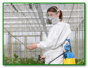 Профилактика отравления пестицидами