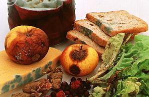 микотоксины в продуктах