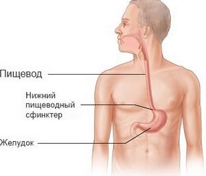 аллергия при простудных заболеваниях