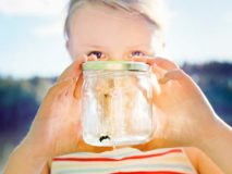 Правила поведения при укусах ребенка насекомыми, советы специалистов